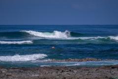 Free Surf.  PHOTO: ISA / Sean Evans