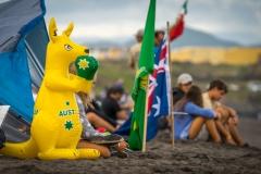 AUS - Kangaroo. PHOTO: ISA / Evans