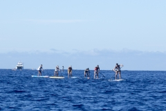 SUP Distance Race- Leaders. PHOTO: ISA / Ben Reed