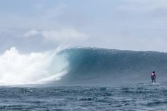 HAW - Mo Freitas. PHOTO: ISA / Ben Reed