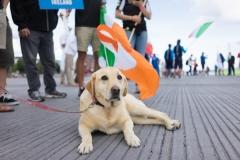 IRE - Pup Lifestyle  Team Opening Ceremony. PHOTO: ISA / Evans
