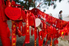 Dongshan Lucky Ribbons. PHOTO: ISA / Tim Hain